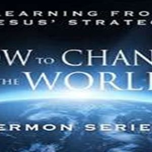 How to Change the World - Incarnation - Audio