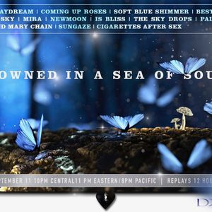 Drowned in a Sea of Sound, Volume 20