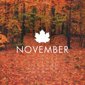 November Deep Dubstep Rain
