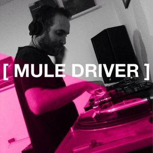 Auerbach #2 - MULE DRIVER