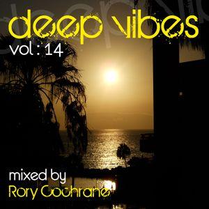 Rory Cochrane - Deepvibes vol 14