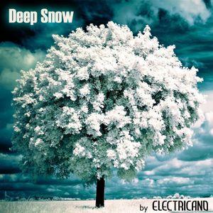 "Electricano pres. ""Deep Snow!"" mixed compilation (December 2010)"