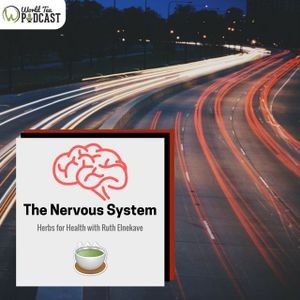 Herbs for Health - The Nervous System | Ruth Elnekave