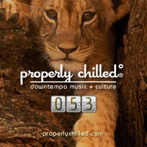 Properly Chilled Podcast #53 (B): Encore of Echo Beach (WLUW) Mix