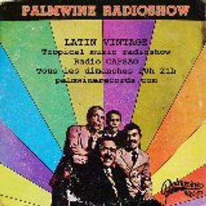 Palmwine Radioshow #01 // by Mambo Chick for Radio Capsao