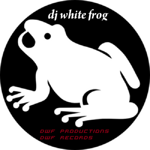 dj white frog after illusion summer 2004 @ the cube ostend