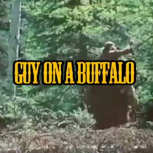 3| Mascot or Indie Band, TP Madness, Buffalo Rider