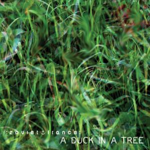 A Duck in a Tree 2013-08-10 | Maintain Silence and It Will Speak