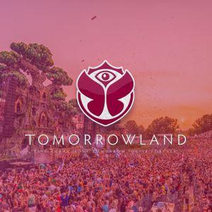 Armin van Buuren @ Tomorrowland Belgium 2017 - 29 July 2017