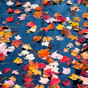 Autumn Deep House Mix - September 2011