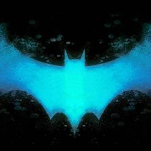 Signals from the Bat Cave- Ice Ice Turtle Knight
