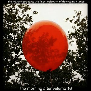 The Morning After volume 16 compiled by Žile Maravić