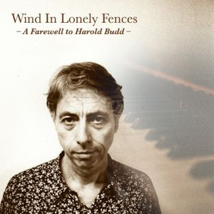Wind in Lonely Fences - A Farewell to Harold Budd