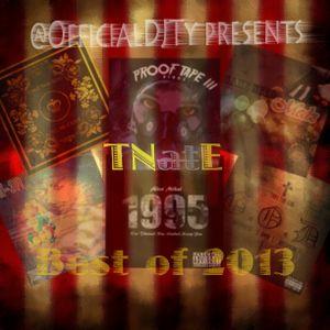 DJ Ty 860 - TNatE : Best of 2013 (Full Mixtape)