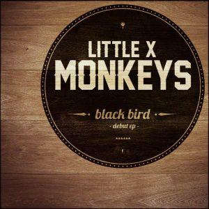 Influences litigieuses de Little X Monkeys + Session acoustique