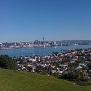 Auckland Field Recordings