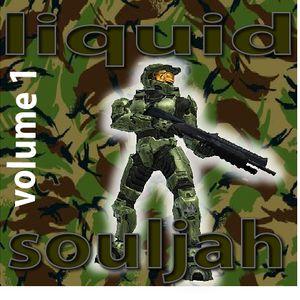liquid souljah cd 1