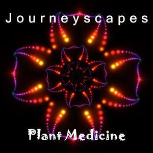 PGM 094: Plant Medicine