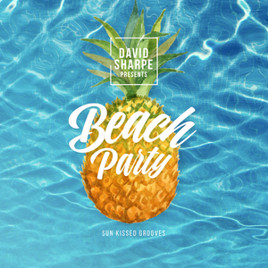 Beach Party (Sun Kissed Grooves)