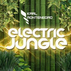 Karl Montenegro presents: Electric Jungle #003 @Dirty Beats Radio