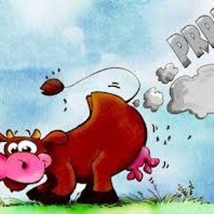 bouse de vache