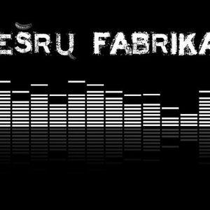 Desru Fabrikas 2010-12-04