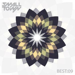 BEST OF 2009 ✖ SMALLTOWN DJS