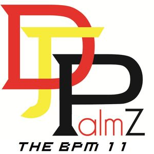 DJ Palmz - The BPM 11