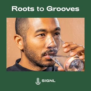 """Roots to Grooves: Discussing """"Toro y Moi"""""""