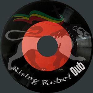 Vinyl Freestyle Dub Session Vol. 3