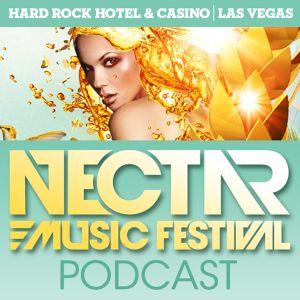 Nectar Music Festival Podcast: Episode 1e ft. David Jones