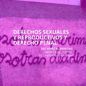23 JUL 2014 - DERECHOS SEXUALES Y REPRODUCTIVOS Y DERECHO PENAL