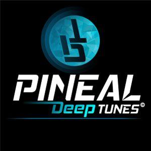 #1 Pineal Deep Tunes
