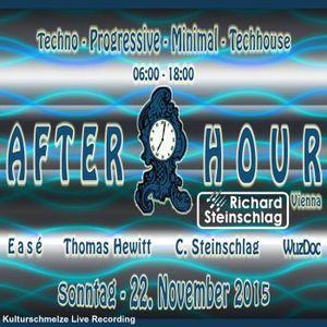 Afterhour Vienna @ Kulturschmelze
