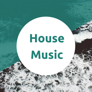 House Mix vol.1 - Mr. Falcon