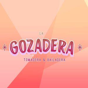 C-Mireles / Gozadera Irapuato