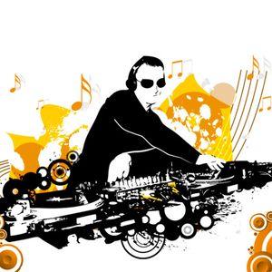13. Live DJ Mix (Volume 13)
