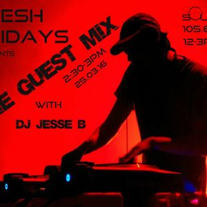 DJ Jesse B - hold on to your balls or they will explode - live house mix - codesouth FM special