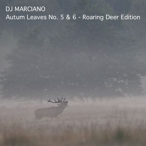 Autum Leaves No. 5 & 6 - Roaring Deer Edition (October 2017)
