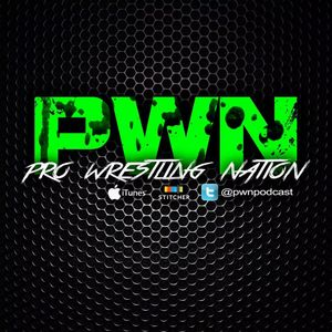 PWN85: WWNLive Experience