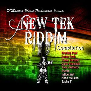 Selekta Faya Gong – New Tek Riddim 2K11