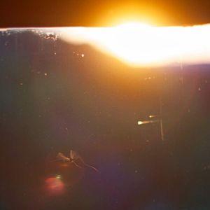 As the sun kissed the horizon