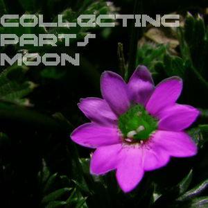 Collecting Partsmoon  29/06/2014  Podcast