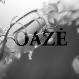 Sesta Oazes laida, antra valanda. Part 2
