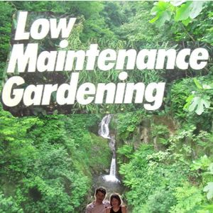 Low Maintenance Gardening - Pierre & Olesya