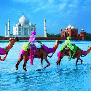 Trip To India Mix