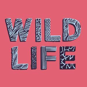 Wildlife15