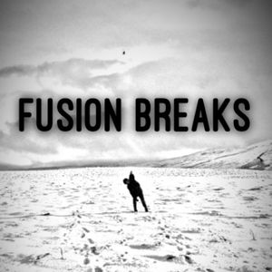 Fusion Breaks... Bring on 2018