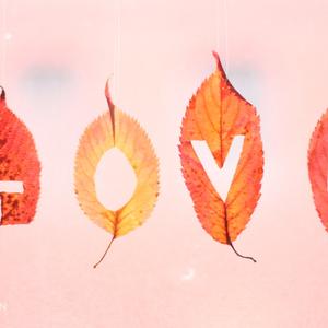 Dusty Jack - Love in Fall