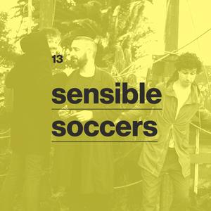 13 - sensible soccers